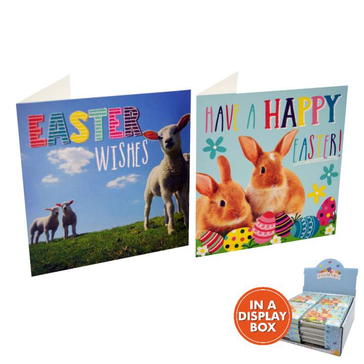 Easter cards 10PK - Photo (in acetate box) - in display