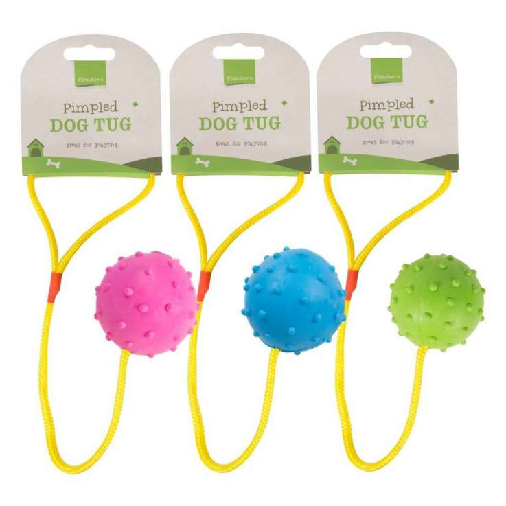 Dog toy chase n chew pimpled ball - assorted colours