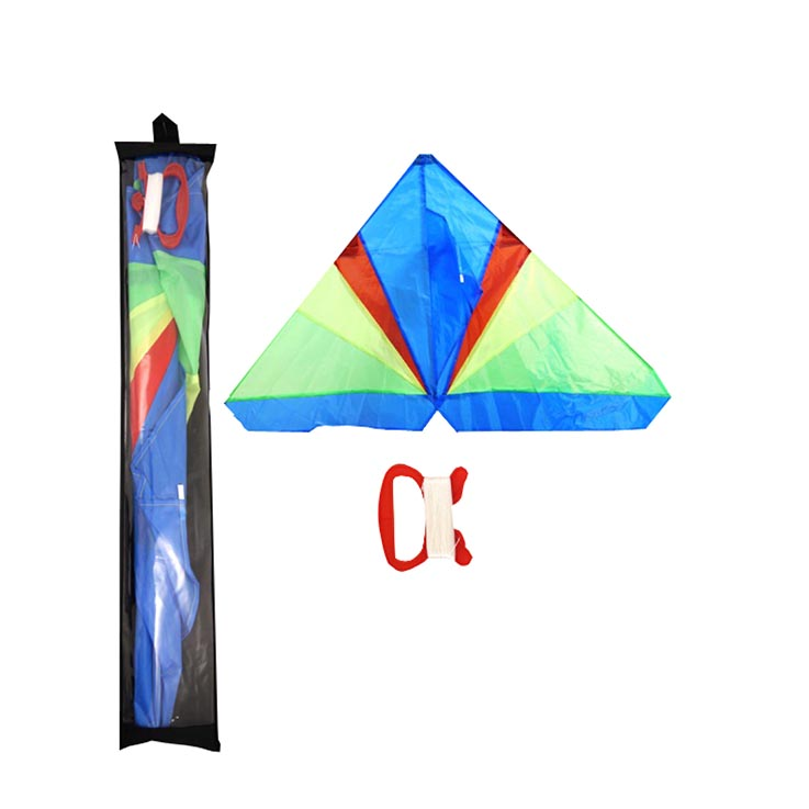 Kite single line delta (133 x 74cm)