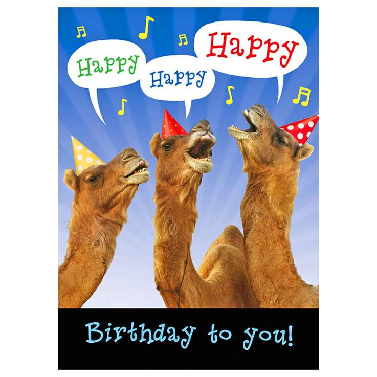 Garlanna Greeting Cards Code 50 - Humour Camels