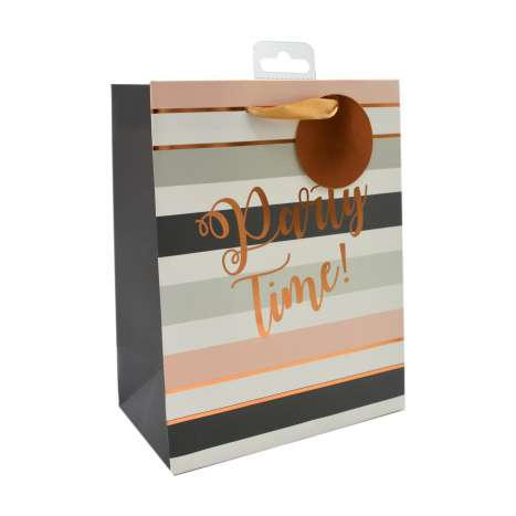 Medium Gift Bags - Party Time! (18cm x 23cm)