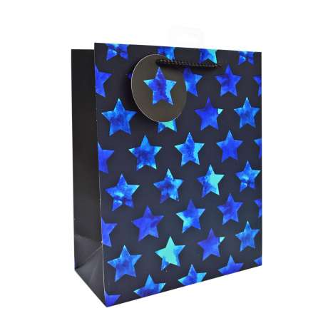 Medium Gift Bags - Blue Stars (21cm x 26cm)
