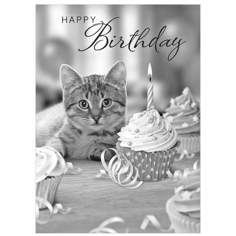 Garlanna Greeting Cards Code 50 - Cat Photo