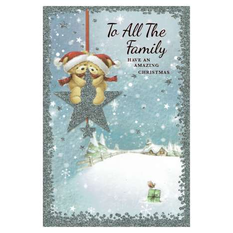 Christmas Cards Code 75 - All The Family