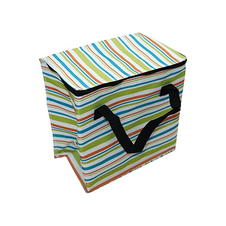Stripey cooler bag