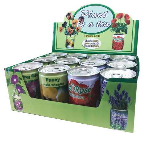 Plant in a tin 4 assorted