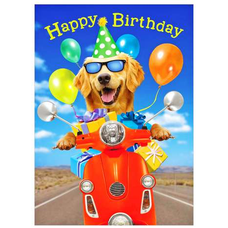 Garlanna Greeting Cards Code 50 - Dog Scooter